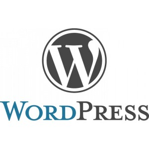 logotipo de wordpress para curso de wordpress online multimedia