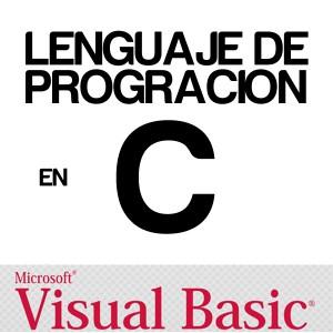 imagen curso online programacion visual basic y C